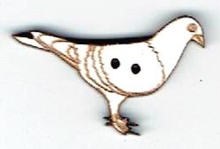 BG133 - Pigeon