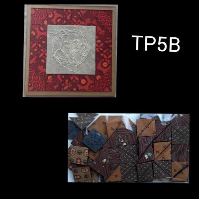 TP5B -  Kit tableau patch